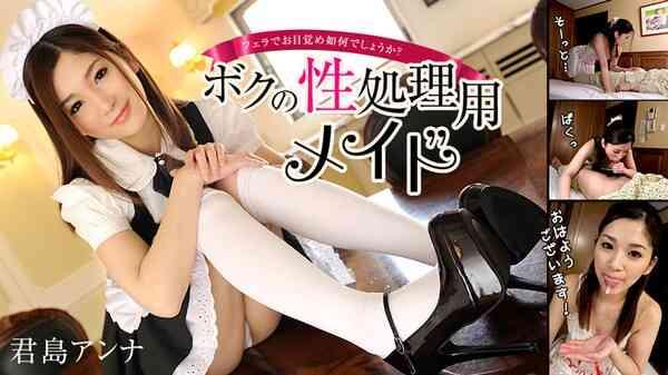 Heyzo-0932 性処理用 君島アンナ海报剧照